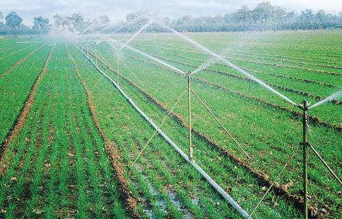 温室喷灌设备-石家庄市品牌好的滴灌管哪里买