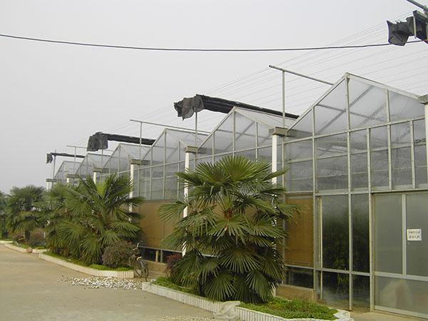 承建陽光板溫室 可靠的陽光板溫室 花卉陽光板大棚 北方溫室