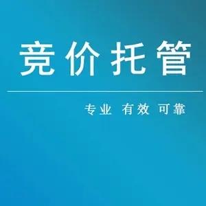深圳競價托管,依托數據追蹤高咨詢數據-廣告費發在刀刃上