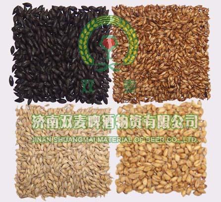 山东哪里供应的烘焙麦芽好-精品烘焙麦芽