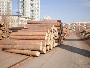 蘭州木材推薦|嘉峪關木材批發