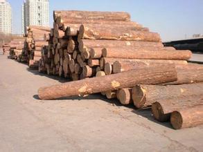 臨夏圓木銷售,供應蘭州優惠的圓木