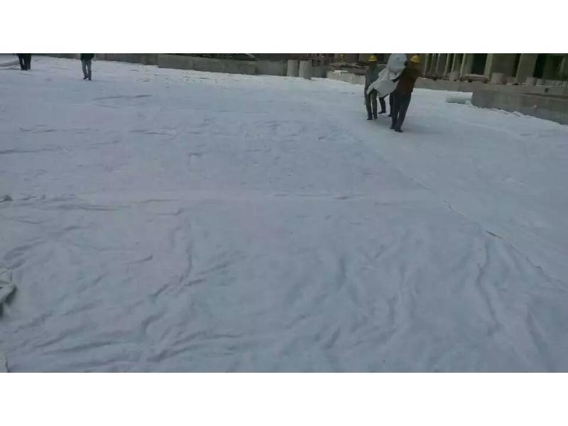 聚脂无纺布价格-三狮无纺布提供好用的聚脂无纺布产品