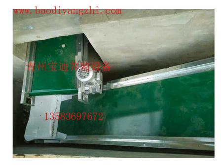 清粪带供应-山东划算的清粪设备供应