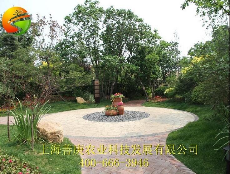上海哪里有提供别墅园林景观设计施工_如何选择别墅园林景观设计施工
