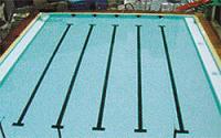黄南拆装式游泳池哪家好|兰州哪里有卖价格优惠的游泳池