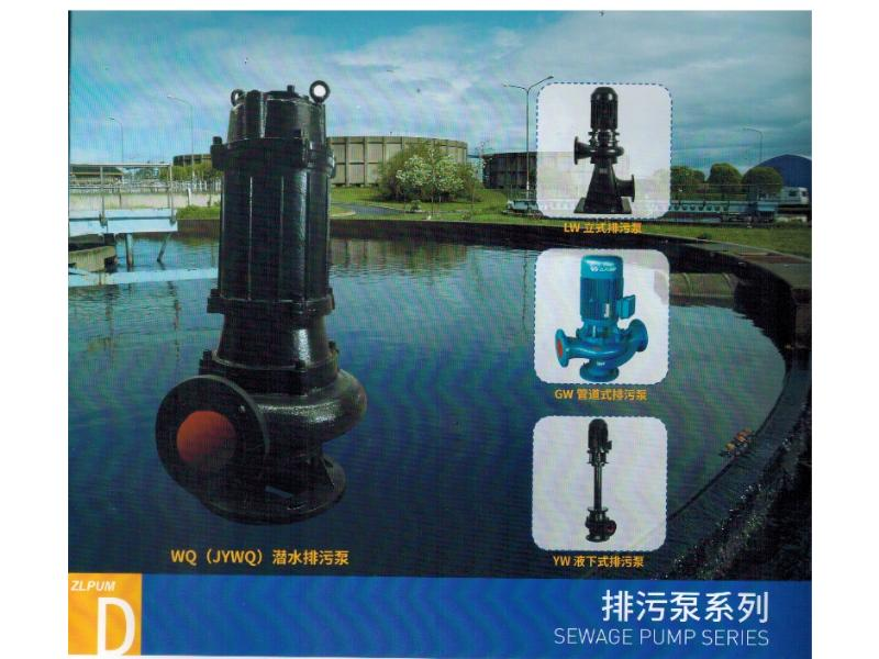 泉州哪里有卖划算的污水泵-福建污水泵