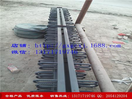 价格合理的DSSF-160型桥梁伸缩缝-北京市高性价DSSF-160型桥梁伸缩缝供应