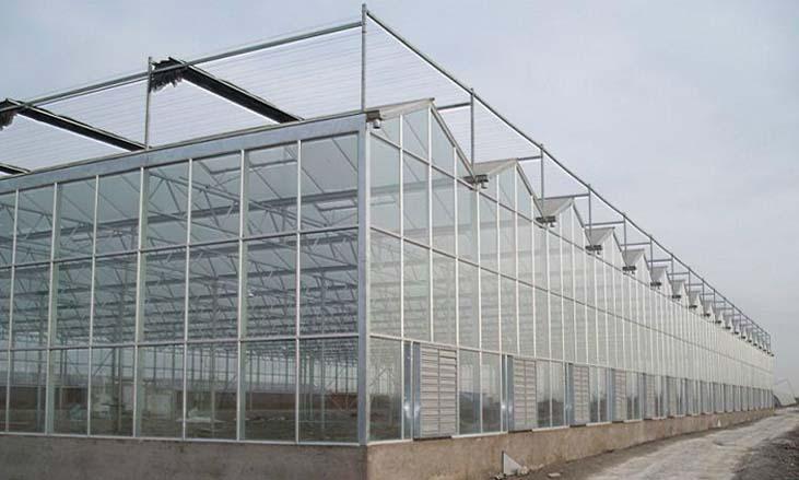 河南纹络式温室工程【你想要我都给你】苗木园林温室建造