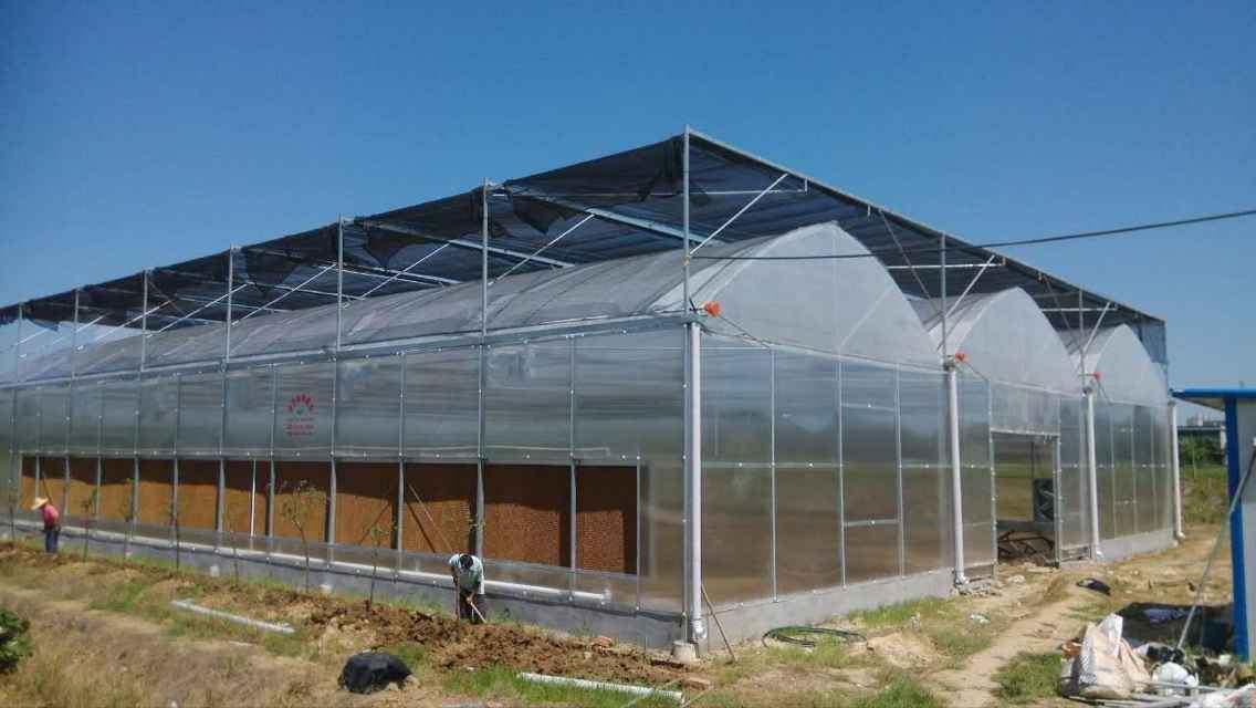 薄膜连栋温室建造-哪里有提供效果好的薄膜连栋温室