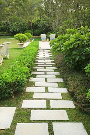绿之乡绿化保洁提供有品质的园林景观_集美园林景观