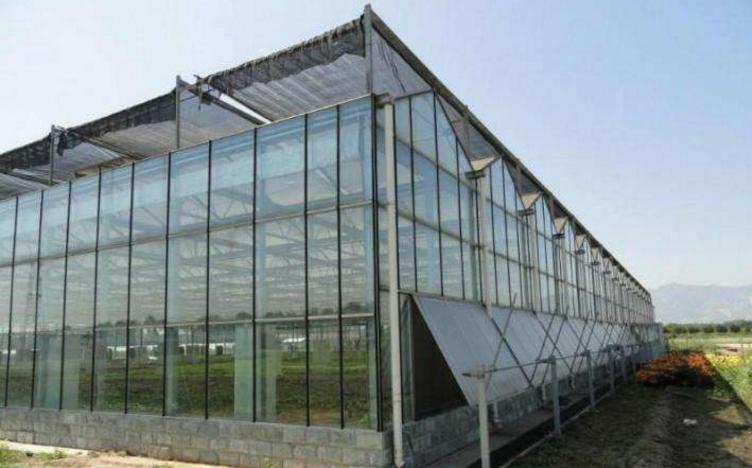 哪里有提供口碑好的蔬菜温室大棚——花卉温室造价