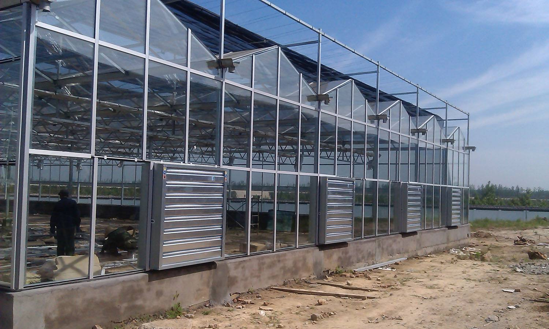 智能温室大棚建设——光伏蔬菜大棚价格行情