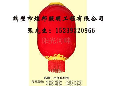优质LED灯笼供应商推荐 西藏哪里有卖LED灯笼