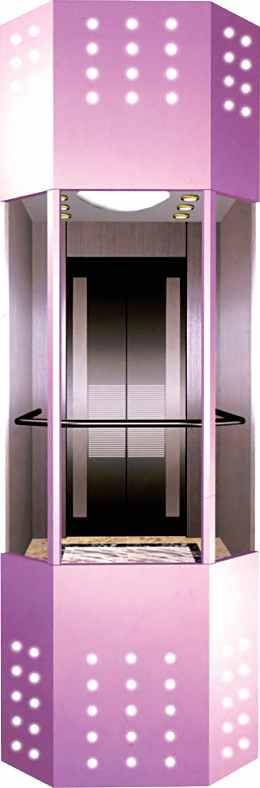 江苏观光电梯可靠供应商推荐 家用观光电梯厂家