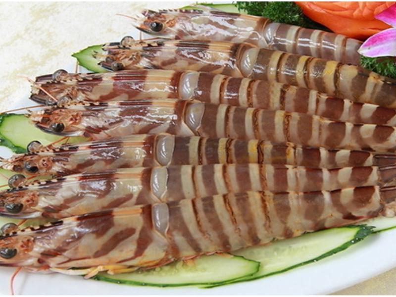 具有价值的九节虾市场价格情况_南平九节虾