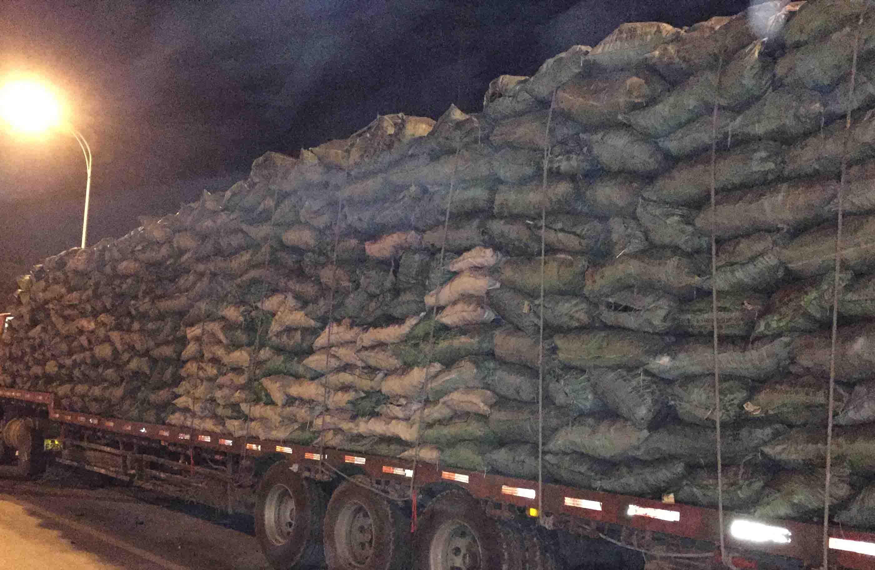 汉中工业木炭价格_选购价格优惠的工业木炭,就来天达炭业