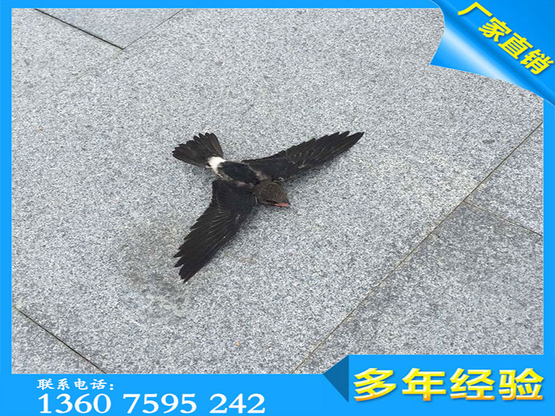 漳浦688花岗岩