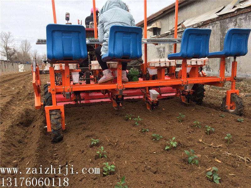 的甘蓝移栽机生产厂家-皓泽农业装备 青州移栽机价格