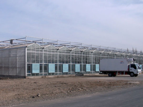 潍坊玻璃温室大棚报价――烟台玻璃温室大棚