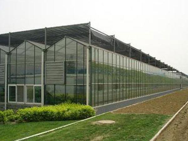 双拱双膜温室建造找万铭农业科技――双拱双膜温室承接