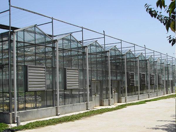 玻璃温室大棚建造 哪里有提供创新型的玻璃温室大棚
