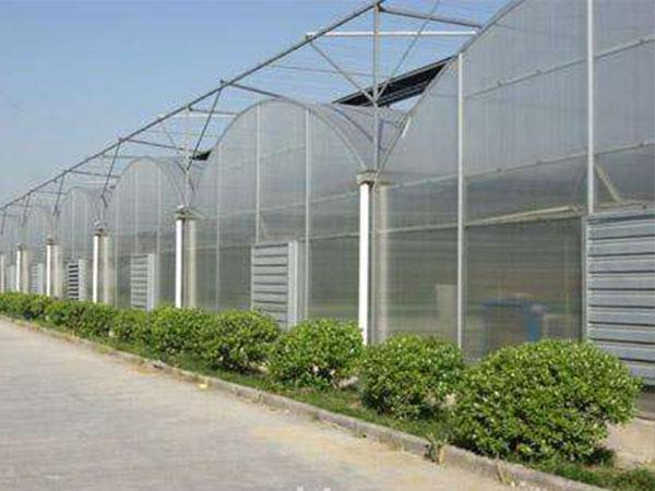 连栋薄膜温室价格,连栋薄膜温室建造找万铭农业科技