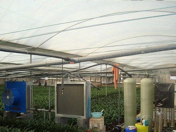 河北生态餐厅公司|生态餐厅认准万铭农业科技