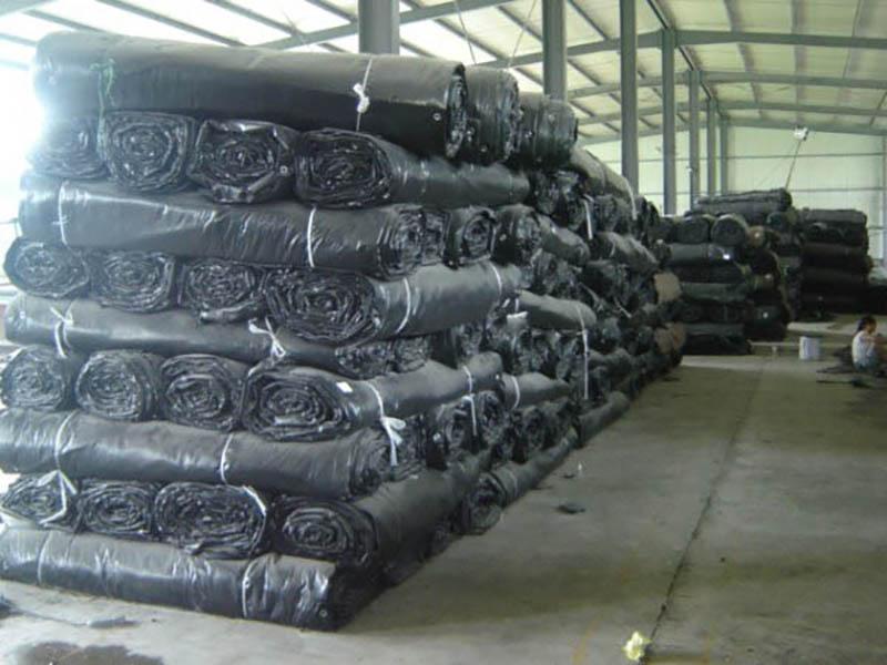 甘肅大棚保溫被廠家-甘肅哪里有供應實惠的大棚保溫被