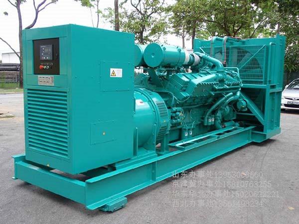 威海300kw发电机组出租-聊城区域知名的发电机组出租厂家