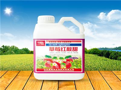 可靠的植物生长调节剂使用方法批发商——植物生长调节剂
