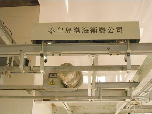 数字显示器|口碑好的平台秤供应商当属秦皇岛市渤海电子衡器
