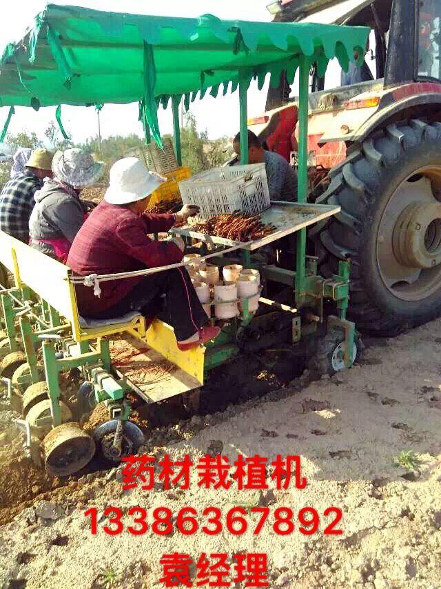 潍坊哪里卖药材栽植机,热卖党参、丹参栽植机移栽机