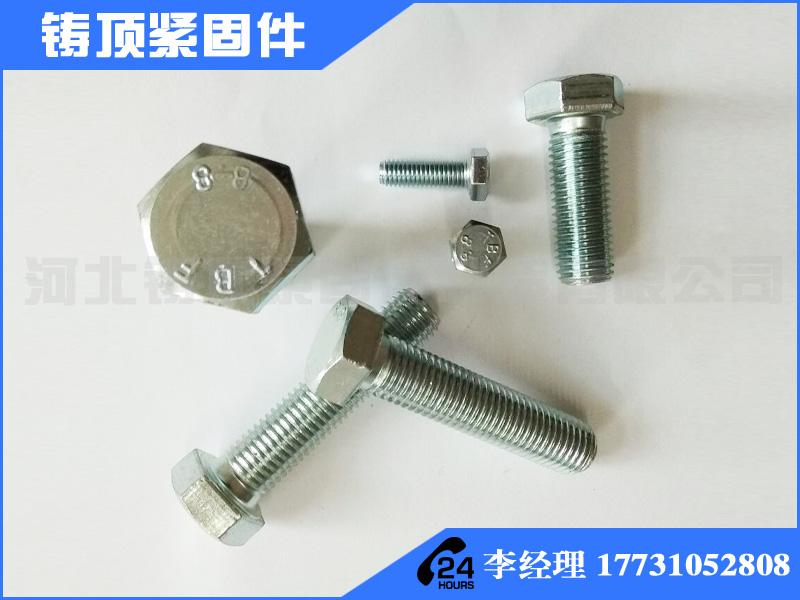 热镀锌螺丝专业生产厂家 热镀锌螺丝厂家批发