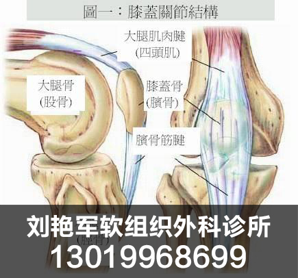 哪里有提供放心可靠的颈椎间盘突出|盘锦腰椎间盘突出