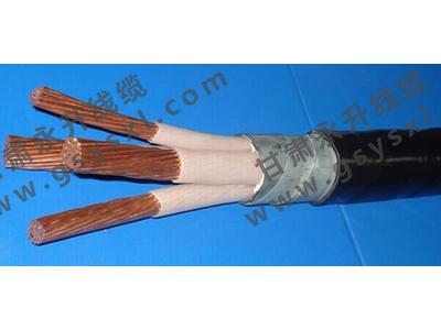 专业生产永升线缆_质量好的电线电缆甘肃永升线缆供应