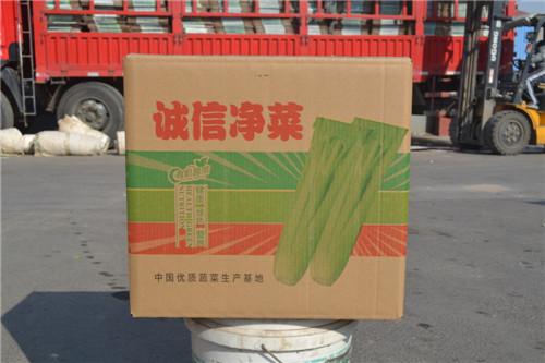 大量出售蔬菜纸箱|潍坊圆椒专用箱销售