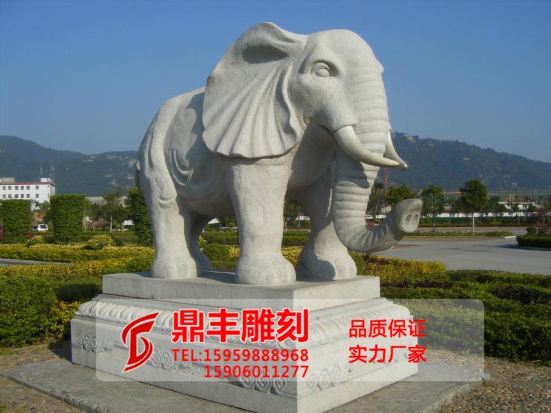 江西大象石雕-福建大象石雕价格如何