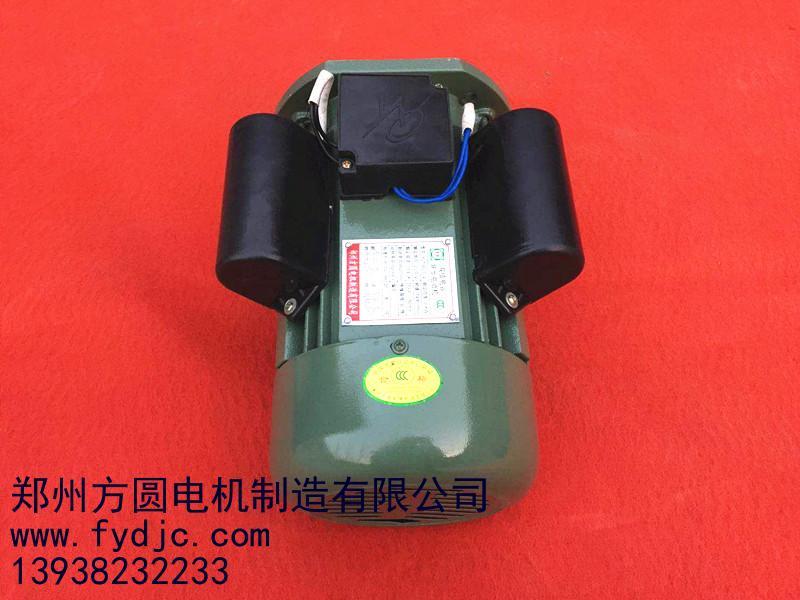 长轴电动机_河南专业的大马力单相双值电容异步电动机哪里有供应