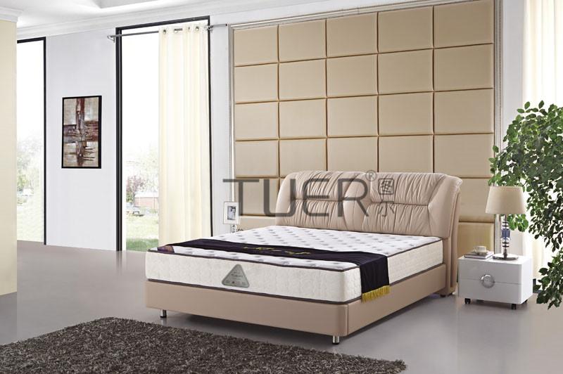 樟木头软床厂-价格合理的时尚休闲软床推荐