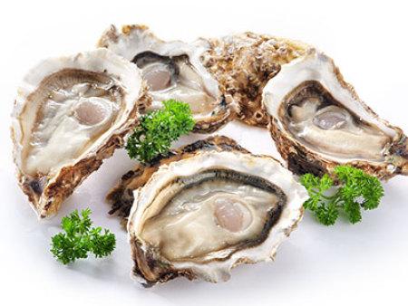 三明进口生蚝 贝拉水产-有口皆碑的进口生蚝公司