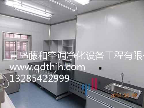 青岛实验室家具净化器专业供应商|唐山实验室家具净化