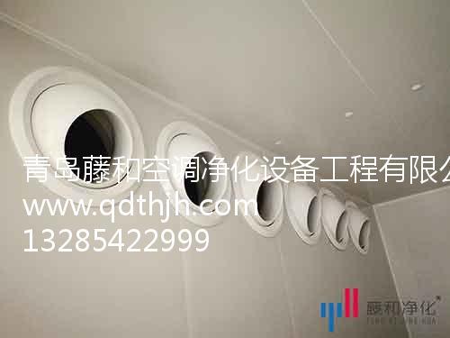 净化工程案例 提供的净化工程