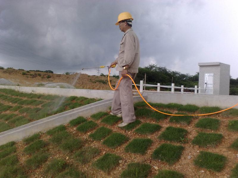 有保障的水库白蚁防治就选嘉信白蚂蚁防治 福建水库白蚁防治