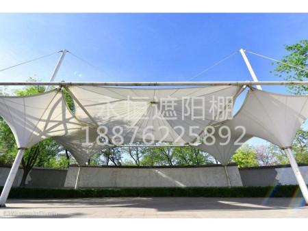 遮阳棚价钱如何-优质的福建遮阳棚