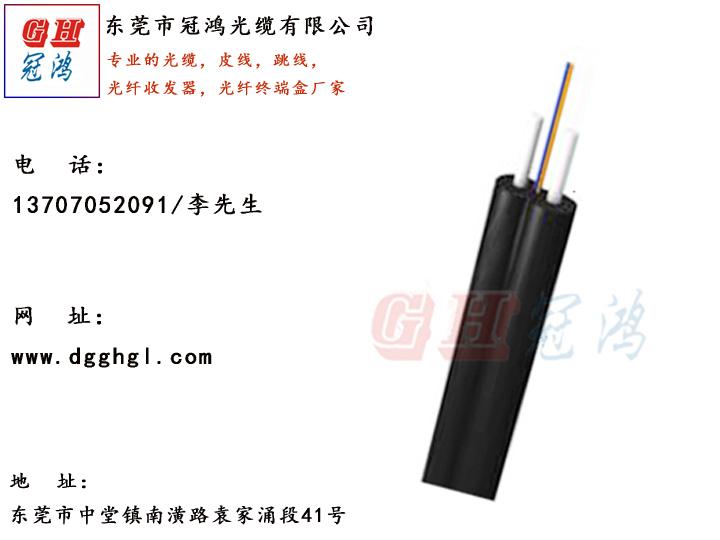 佛山光纤光缆——【推荐】东莞优惠的皮线