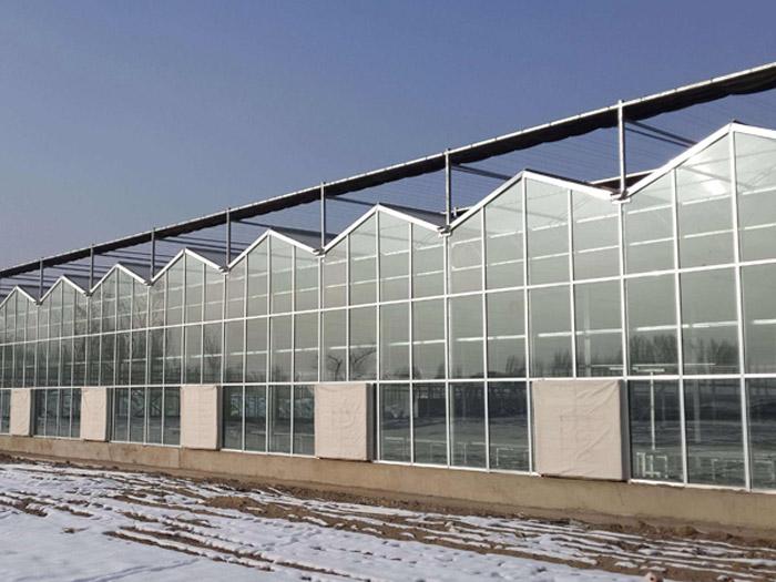 甘肃生态园智能温室-山东创新型的新型智能温室
