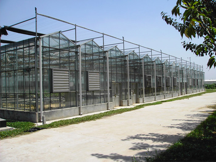 江苏玻璃温室-哪里有提供高性价新型智能温室