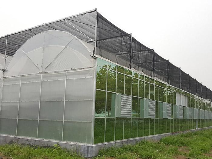 生态园艺温室-山东优良的薄膜连栋温室