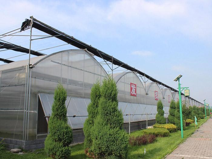 生态园艺温室-薄膜连栋温室建造找哪家